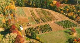 Jewell Towne Vineyards New Hampshire